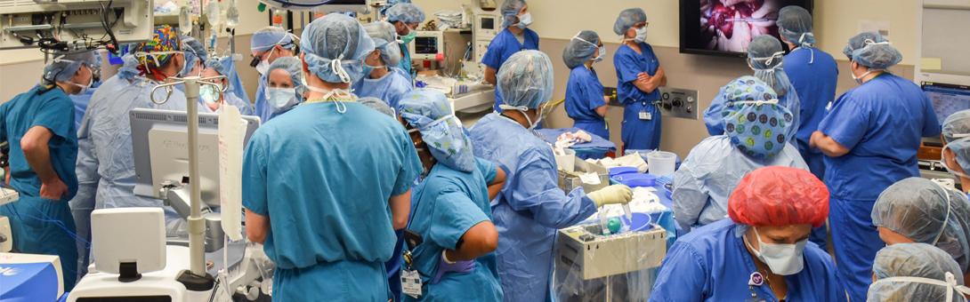 Surgeons perform fetal surgery for spina bifida