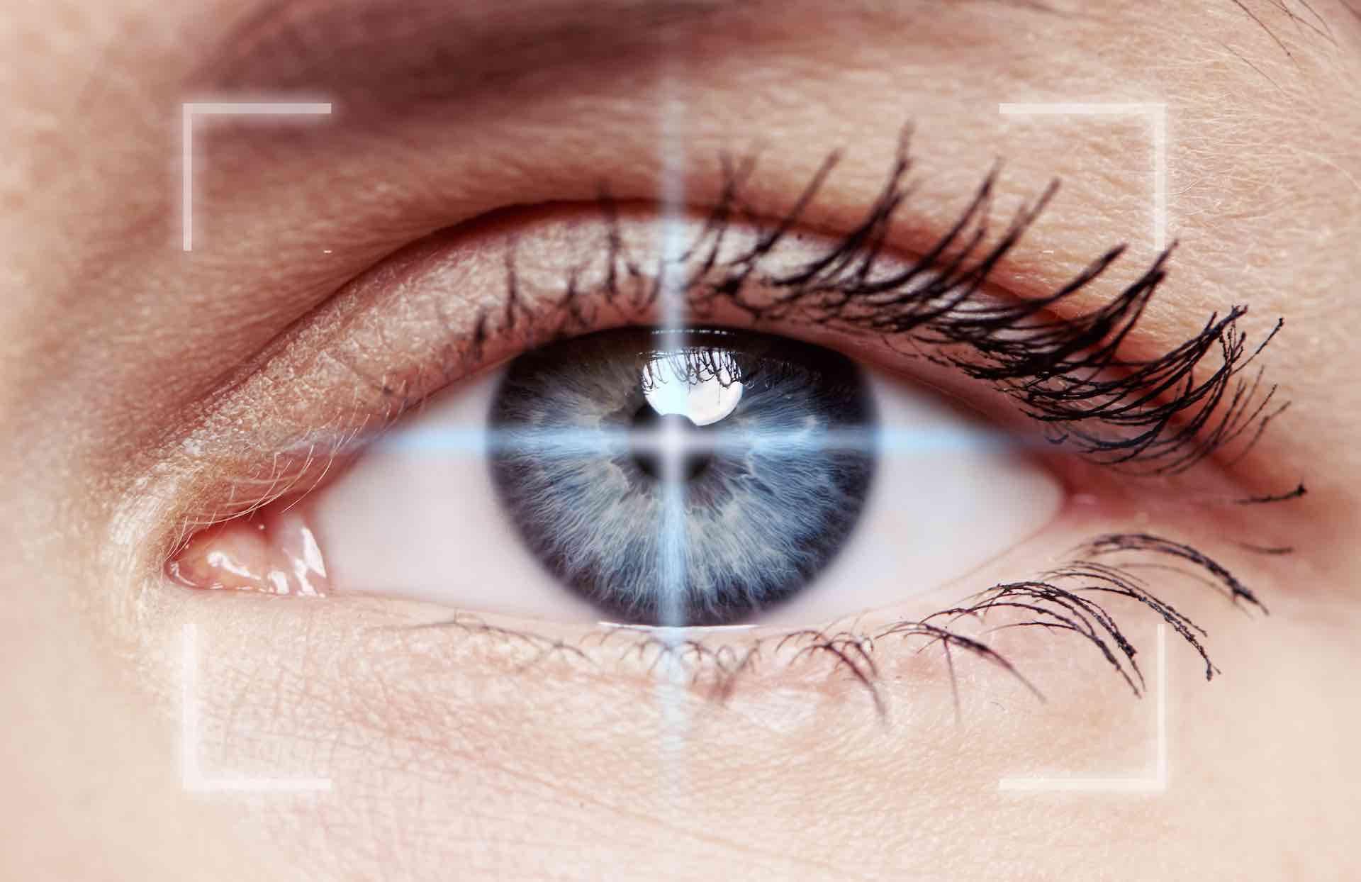build-cornea