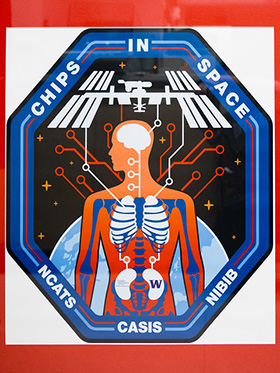 NASA Tissue Chips in Space Project Patch