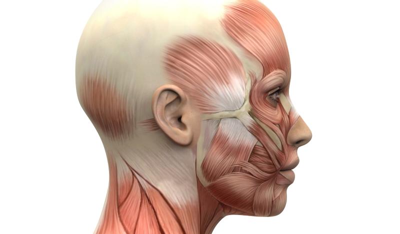 Facial Reanimation Mayo Clinic